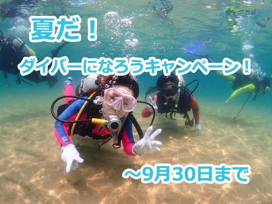 ダイビングスクールキャンペーン
