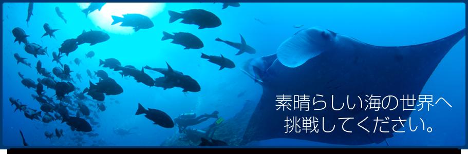 素晴らしい海の世界へ挑戦してください。