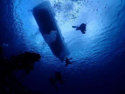 喜界島でダイビング