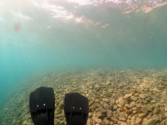 青海島でダイビング