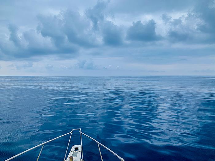 徳之島でクジラと泳ぐ