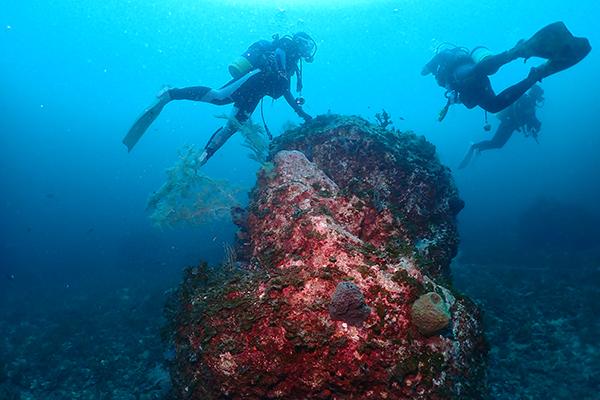 9月5日 相島でダイビング