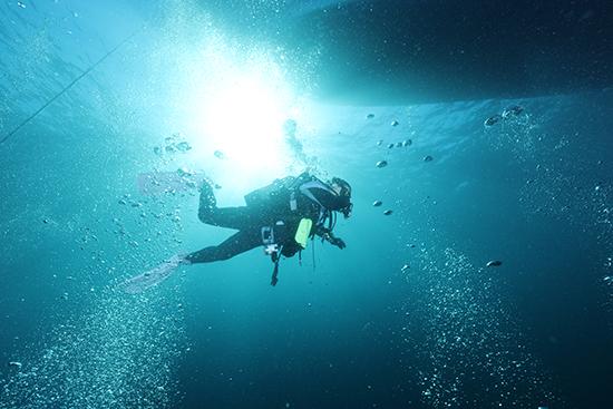 小値賀島でダイビング